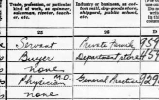 1930 US census Occupation